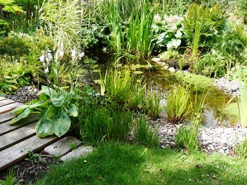 Trädgård trädgård damm : Referenser - Etablerat